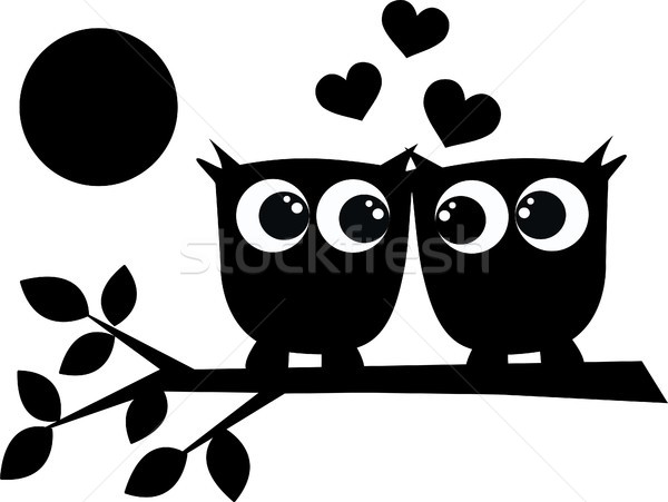 two owls in love  Stock photo © popocorn