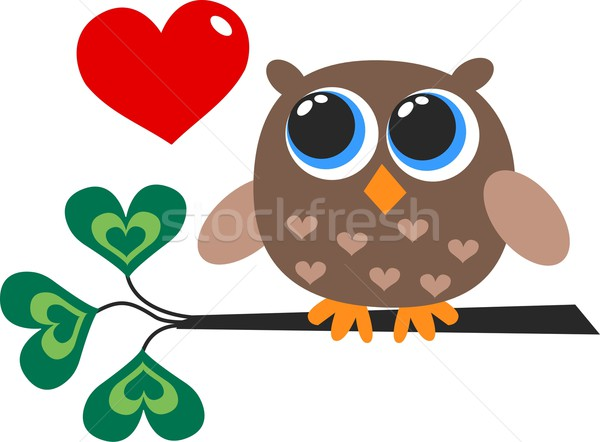 a cute little brown owl Stock photo © popocorn