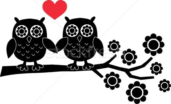 Dois doce corujas amor família abstrato Foto stock © popocorn