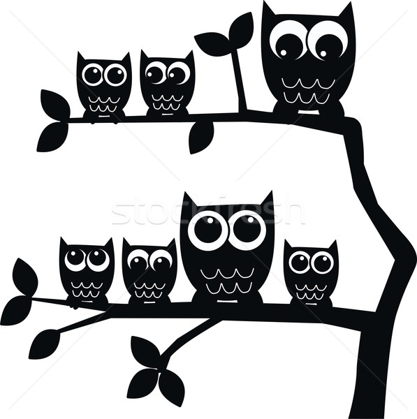 a Group of owls sitting in a tree Stock photo © popocorn