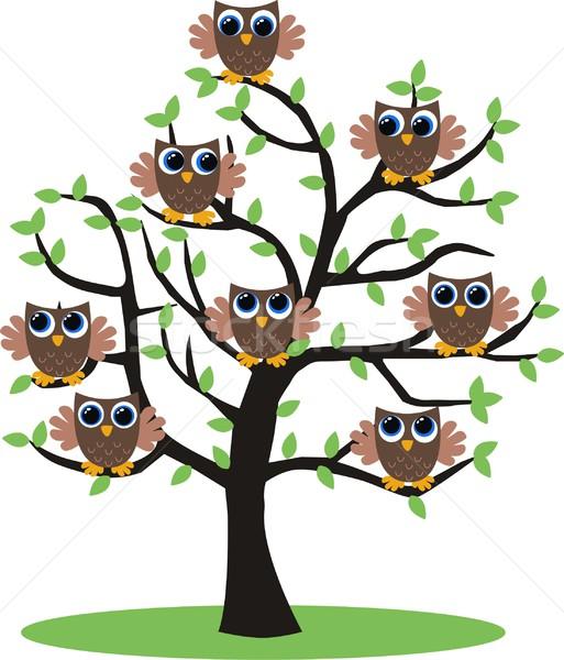 Stok fotoğraf: Kahverengi · baykuşlar · ağaç · aile · dizayn · çift