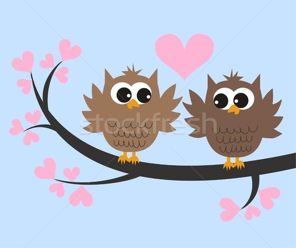 совы любви дерево природы фон птица Сток-фото © popocorn