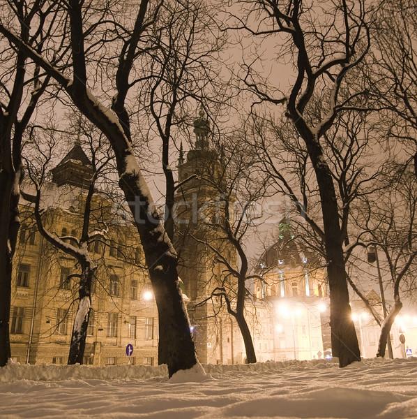 Winter nacht straat boom straat sneeuw Stockfoto © Pozn