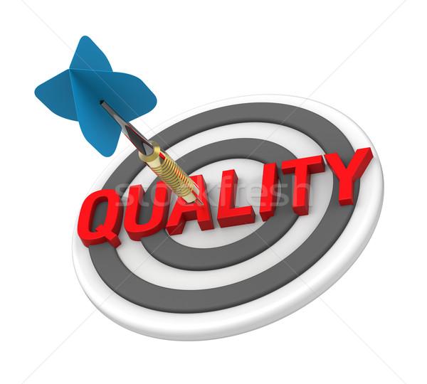 Kék darts cél szöveg minőségellenőrzés számítógép Stock fotó © ppart