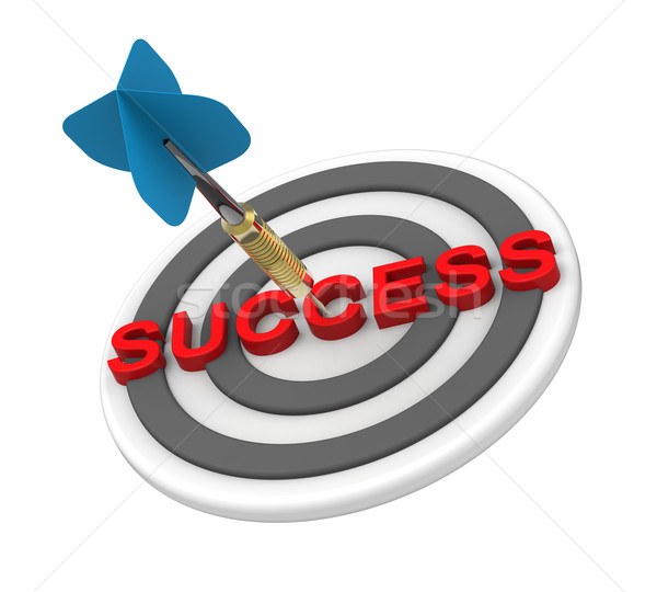Dart hiting the target with success text on it Stock photo © ppart