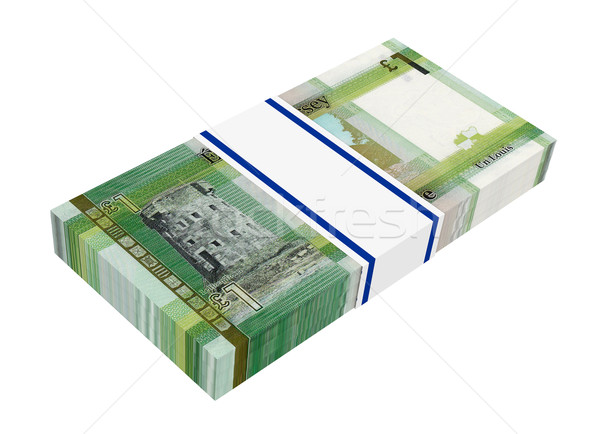 Jersey pound isolated on white background.  Stock photo © ppart