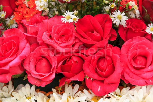 Gül parlak çiçekler güzel buket çiçek Stok fotoğraf © prajit48
