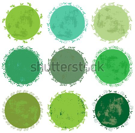 Round green vector floral labels or tags  Stock photo © Pravokrugulnik