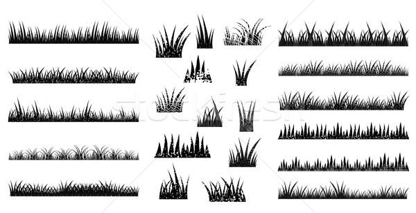 Hosszú rövid vektor fű fekete szín Stock fotó © Pravokrugulnik