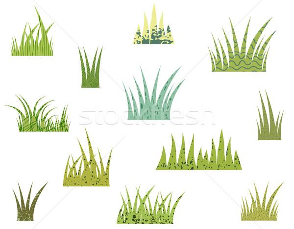Vetor estilizado grama verde textura branco paisagem Foto stock © Pravokrugulnik