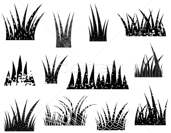Tufts of vector abstract grass silhouette with texture  Stock photo © Pravokrugulnik