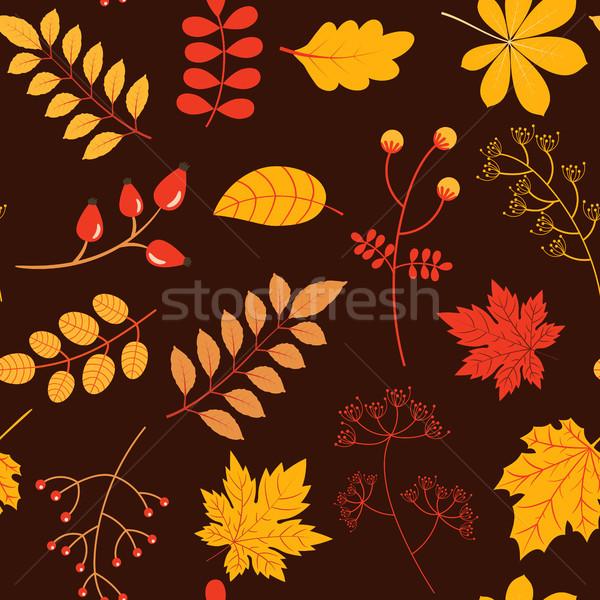 Сток-фото: осень · вектора · красочный · желтый