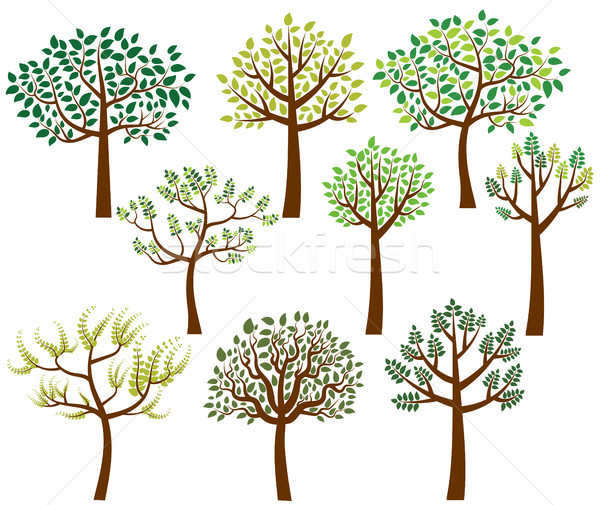 Vector collection of stylized tree silhouettes with leaves Stock photo © Pravokrugulnik