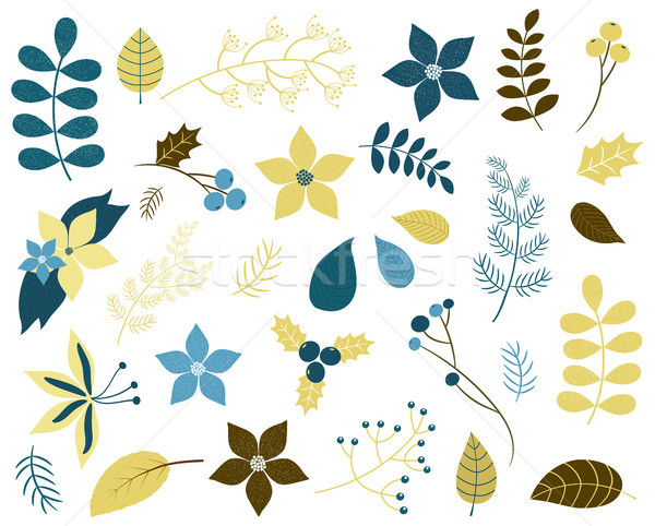 Winter and Christmas foliage with flowers, twigs and leaves in blue and gold green colors Stock photo © Pravokrugulnik