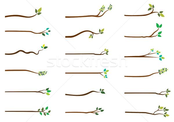 Basit vektör ağaç yeşil yaprakları beyaz Stok fotoğraf © Pravokrugulnik