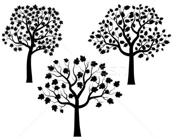 Siyah ağaç siluetleri siluet dizayn sanat Stok fotoğraf © Pravokrugulnik