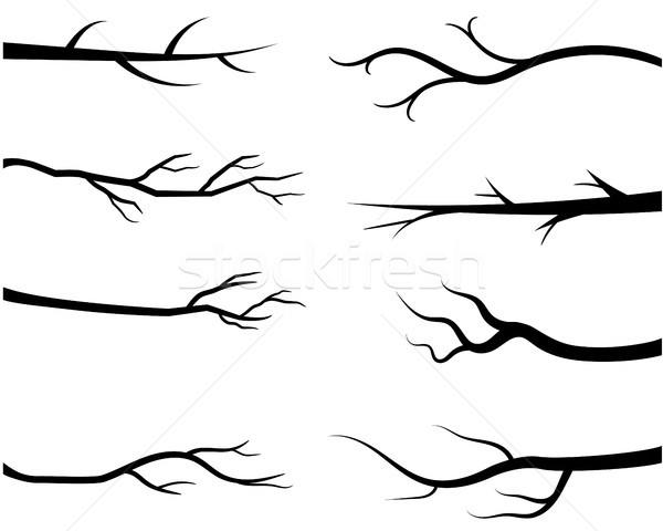 Foto d'archivio: Nudo · sagome · nero · rami · foglie
