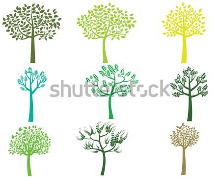 Photo stock: Stylisé · vecteur · arbre · vert · silhouettes · isolé · blanche