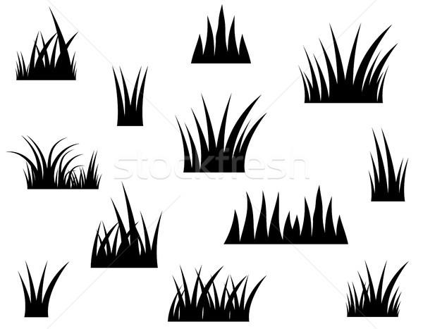 Siyah vektör çim siluet beyaz manzara Stok fotoğraf © Pravokrugulnik
