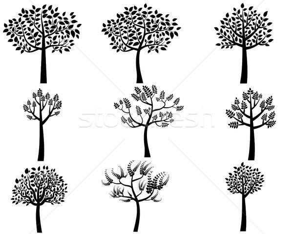 Vektor fa sziluettek terv művészet levelek Stock fotó © Pravokrugulnik