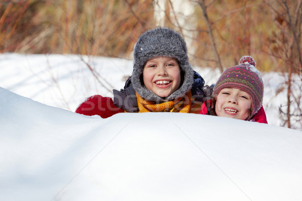 Hiding in snow Stock photo © pressmaster