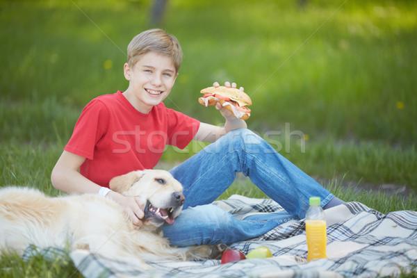 ピクニック 犬 肖像 かわいい 若者 ふわっとした ストックフォト © pressmaster
