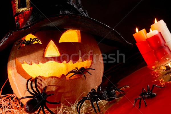 Pumpkin and spiders Stock photo © pressmaster