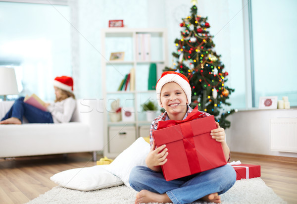 Chico regalo retrato alegre nino grande Foto stock © pressmaster