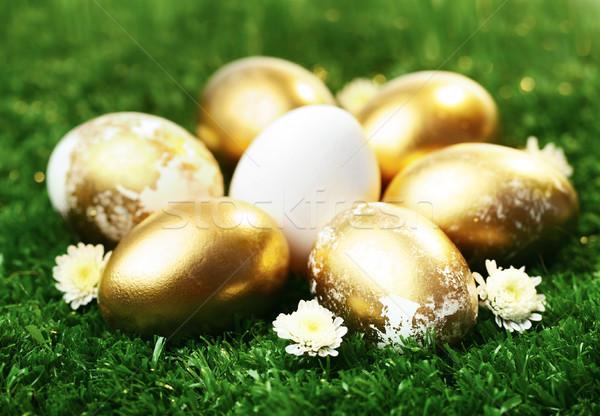 Paskalya semboller altın paskalya yumurtası yeşil ot bahar Stok fotoğraf © pressmaster