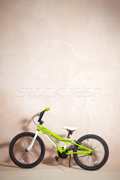 Mountain bike Stock photo © pressmaster