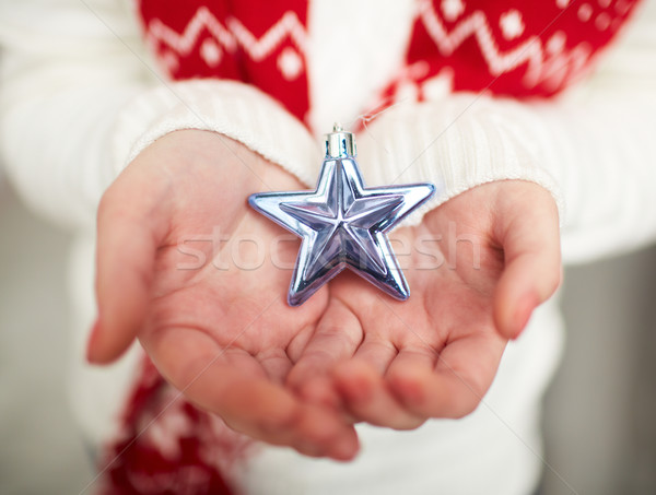 Silver star on palms Stock photo © pressmaster