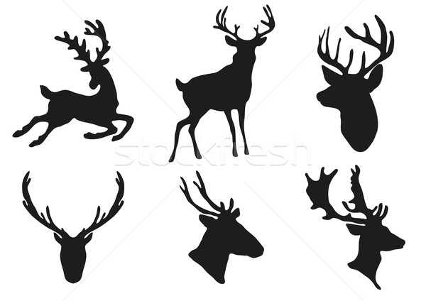 deers silhouettes Stock photo © pressmaster