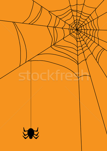 web with spider Stock photo © pressmaster