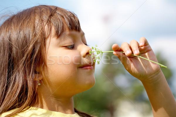 Nice smell Stock photo © pressmaster