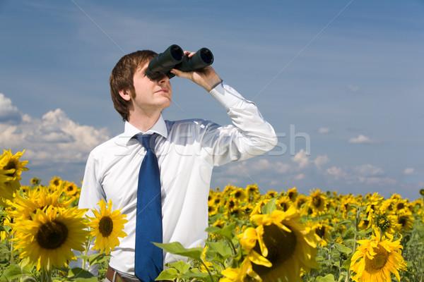 Detetive retrato empresário olhando binóculo girassol Foto stock © pressmaster