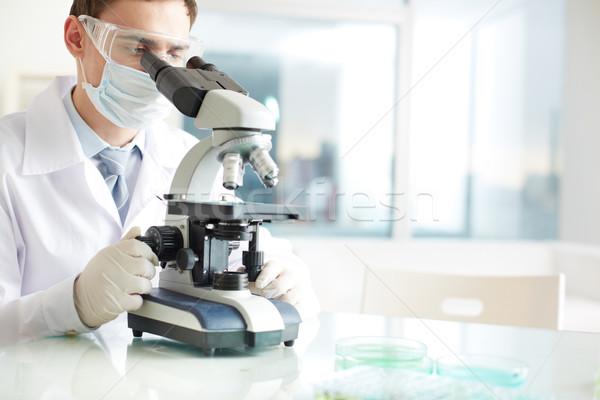 Estudiar nuevos sustancia grave químicos elemento Foto stock © pressmaster