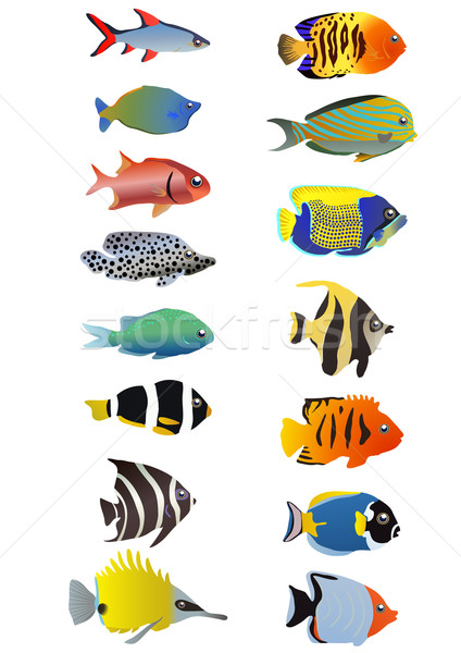 aquarium Stock photo © pressmaster