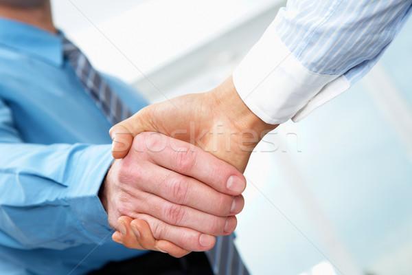 бизнеса рукопожатие два бизнесменов рук Сток-фото © pressmaster