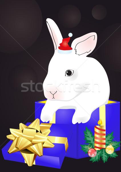 rabbit sitting in the red giftbox  Stock photo © pressmaster