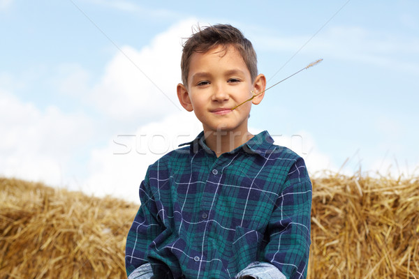 Boy on hay Stock photo © pressmaster