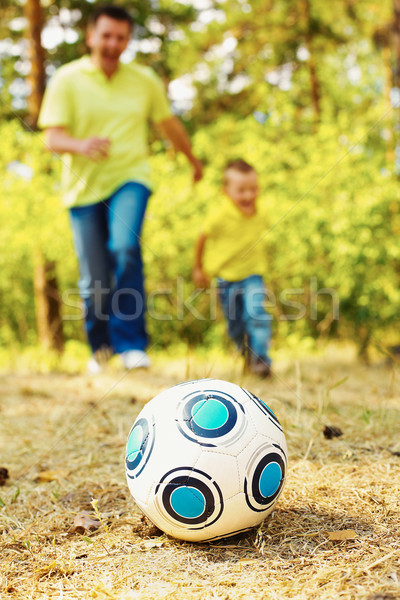 Ball on grassland Stock photo © pressmaster