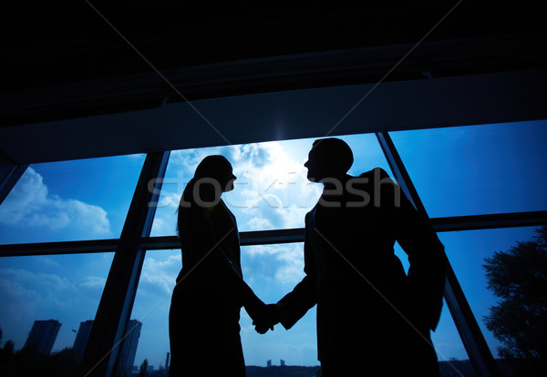 Business partners handshaking Stock photo © pressmaster