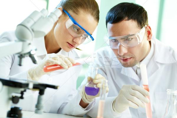 Team of researchers Stock photo © pressmaster