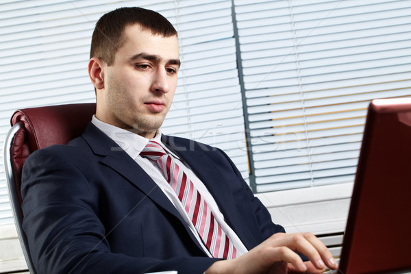 Businessman of handsome presence  Stock photo © pressmaster