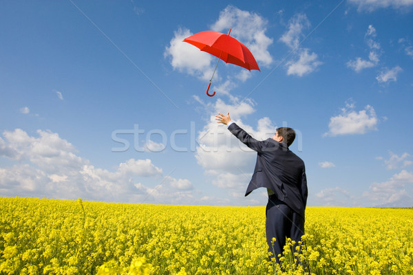 Catching umbrella Stock photo © pressmaster