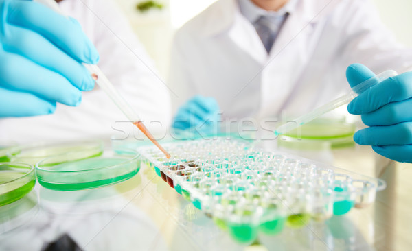 Biochemical research Stock photo © pressmaster