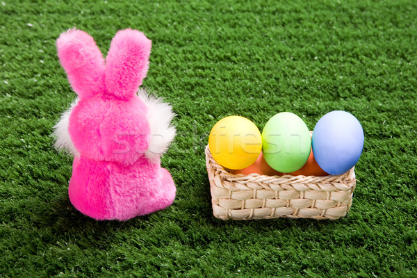 Easter theme Stock photo © pressmaster