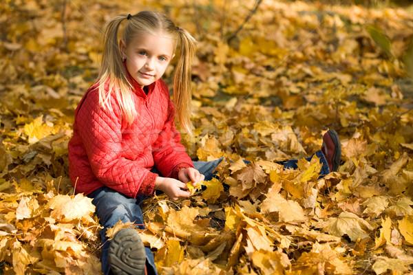 Autumn pleasure Stock photo © pressmaster