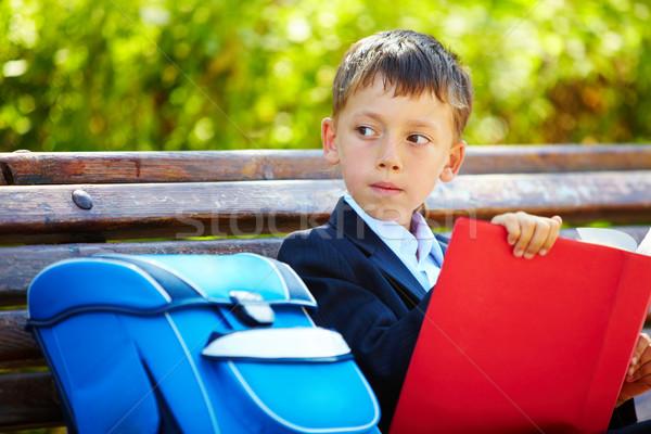 Smart pupil Stock photo © pressmaster