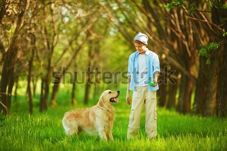 Foto stock: Jogar · cão · retrato · bonitinho · rapaz · labrador
